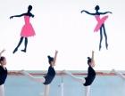 中国舞、形体模特、拉丁舞、书法、美术、跆拳道、乐器