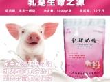 母豬應激使用乳命源乳豬奶粉減少應激