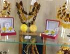 印象琥珀工厂 欧款蜜蜡圆珠项链随形 波兰直供现货