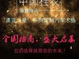 中国桂农 澳亚之星汽车定制脚垫 火爆加盟中