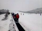 雪地魔毯,景区观光梯,滑雪场运输机,黑龙江省牡丹江滑雪设备厂