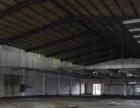东莞东城小型独院单一层钢结构1500平方出租