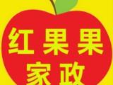 长沙红果果家政提供优秀的保姆月嫂