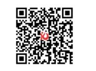 跨境电商平台网站建设 跨境电商网站解决方案