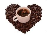 进口咖啡豆发货前需准备哪些材料