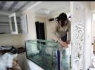 鱼缸洗濯 鱼缸造景 鱼缸维修 鱼缸定做