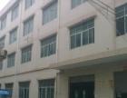 木棉湾地铁站独院电商、办公、厂房低价招租分租