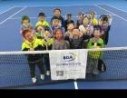 北大西门网球体验课