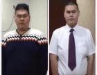 【尚赫美容减肥万元加盟】加盟 项目详情