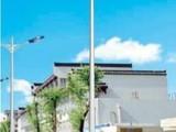 【企业集采】新农村道路灯 LED太阳能路灯6米7米8米道路灯户外