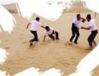 4月16日大手牵小手,一起去库木塔格沙漠撒欢许愿吧