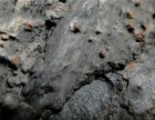2018年碳质球粒陨石哪里买家多