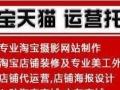丽水最专业的淘宝天猫京东店铺运营托管代运营