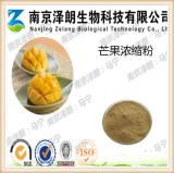 芒果浓缩粉 厂家现货直销 质量保证 QS工厂生产