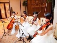 中山曲艺表演 中山乐队表演 中山模特公司
