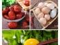 淘宝摄影郑州美食品菜谱菜单拍摄 产品商业静物摄影