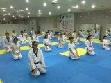重庆专业跆拳道馆