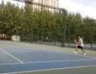 网球教练 可免费体验一次