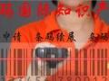 安庆市岳西茶叶条形码如何办理,办理条形码多少钱?