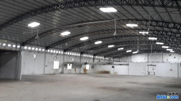 番禺南村250千瓦大电厂房出租