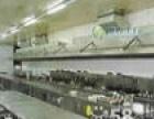 大型管道油烟机清洗维修