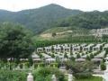 环境管理较好的陵园-九峰陵园