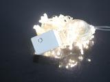 LED灯10米50灯带尾插闪灯串灯节日装饰灯串圣诞彩灯婚庆用品