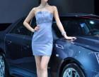 上海礼仪公司展会礼仪模特展会主持人展会人气演出等
