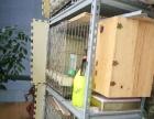 出闲置不锈钢鸟笼、繁殖箱