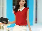 【厂家直销】2014夏季新款女装批发 韩版娃娃领修身雪纺小衫