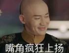 中环城金融服务公司办营业执照刻章王琛注销申请进出口省心
