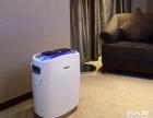2015 ,被**的时尚新款空气净化器