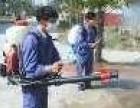 东莞防治白蚁中心 龙科专业资质先进技术 多镇设点