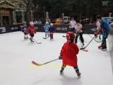 北京各区大量出售出租人造溜冰场厂家直售仿真冰价格合理