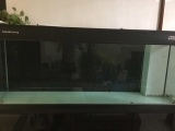 彩蝶龙潭新兵2---0.8米鱼缸