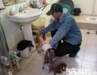 洗手盆疏通 卫生间 阳台 厨房管道软管堵塞疏通 专业快速疏通