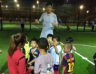 西苑专业篮球足球培训