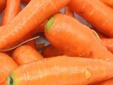 广西农家自种新鲜胡萝卜优质营养胡萝卜无公害新鲜蔬菜大量批发