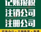 闵行金虹桥代理记账注册高返税年检公示变更法人股东审计验资