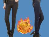 2014冬季女式牛仔裤黄金绒显瘦修身弹力加绒保暖微高腰加大码长裤
