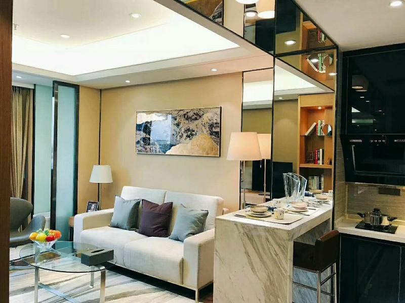 沃德中心精品酒店公寓 55平米 出售