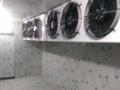 飞翔冷库:专业安装维修,中央空调,鱼缸制冷