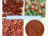 供应:酸枣仁提取物 酸枣子提取物(各种比列)酸枣仁浸膏粉