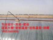 山东结实耐用的农业大棚,北京农业大棚建造
