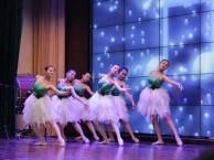 济南市中区儿童舞蹈培训班 专业幼儿少儿芭蕾综合班