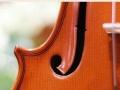初级版用琴STV-P03 学生用小提琴