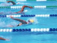 江门儿童游泳培训中心蛙泳,自由泳培训