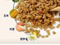 猫粮9.9元2公斤淘宝店铺号85916595