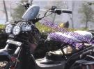 隐形48v锂电折叠铝合金架禧玛诺变速碟刹多功能电动单车750元