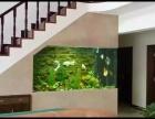 海鲜池,观赏缸定制